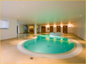 SPATA 2008 Gold Design Winning Residential Indoor Pool